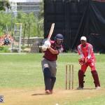 Bermuda Cricket June 9 2019 (5)
