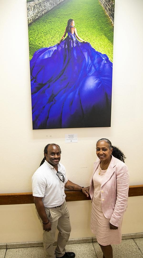 Public Art Project in Govt Buildings Bermuda June 2019 (2)