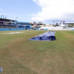 Cup Match Preparations Bermuda July 31 2019 (44)