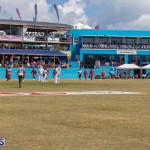 Cup Match Friday Bermuda, August 2 2019-0731