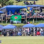 Eastern County Cricket Bermuda, August 17 2019-9246