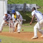 Eastern County Cricket Bermuda, August 17 2019-9279