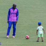 ICC Americas T20 World Cup Qualifier Bermuda vs Canada Cricket, August 19 2019-1314