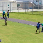 ICC Americas T20 World Cup Qualifier Bermuda vs Canada Cricket, August 19 2019-1332