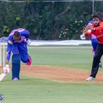 ICC Americas T20 World Cup Qualifier Bermuda vs Canada Cricket, August 19 2019-1428