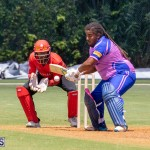 ICC Americas T20 World Cup Qualifier Bermuda vs Canada Cricket, August 19 2019-1436
