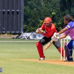 ICC Americas T20 World Cup Qualifier Bermuda vs Canada Cricket, August 19 2019-1437
