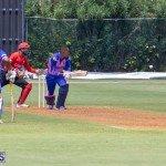 ICC Americas T20 World Cup Qualifier Bermuda vs Canada Cricket, August 19 2019-1455