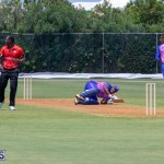 ICC Americas T20 World Cup Qualifier Bermuda vs Canada Cricket, August 19 2019-1481