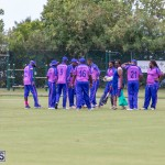 ICC Americas T20 World Cup Qualifier Bermuda vs Canada Cricket, August 19 2019-1550