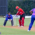ICC Americas T20 World Cup Qualifier Bermuda vs Canada Cricket, August 19 2019-1666