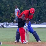 ICC Americas T20 World Cup Qualifier Bermuda vs Canada Cricket, August 19 2019-1695