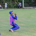 ICC Americas T20 World Cup Qualifier Bermuda vs Cayman Islands Cricket, August 25 2019-2672