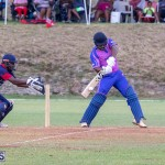 ICC Americas T20 World Cup Qualifier Bermuda vs Cayman Islands Cricket, August 25 2019-2765