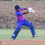 ICC Americas T20 World Cup Qualifier Bermuda vs Cayman Islands Cricket, August 25 2019-2766