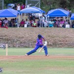ICC Americas T20 World Cup Qualifier Bermuda vs Cayman Islands Cricket, August 25 2019-2776