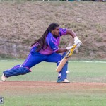 ICC Americas T20 World Cup Qualifier Bermuda vs Cayman Islands Cricket, August 25 2019-2803