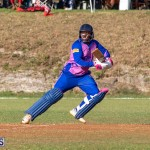 ICC Americas T20 World Cup Qualifier Bermuda vs Cayman Islands Cricket, August 25 2019-3253