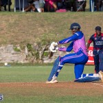 ICC Americas T20 World Cup Qualifier Bermuda vs Cayman Islands Cricket, August 25 2019-3320