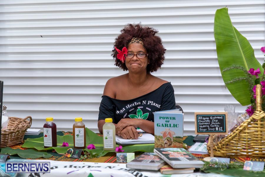 Natural-Blessings-Hair-Show-Bermuda-August-18-2019-1224