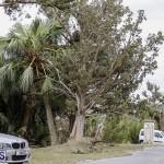 Bermuda After Hurricane Humberto Friday Sept 20 2019  (113)