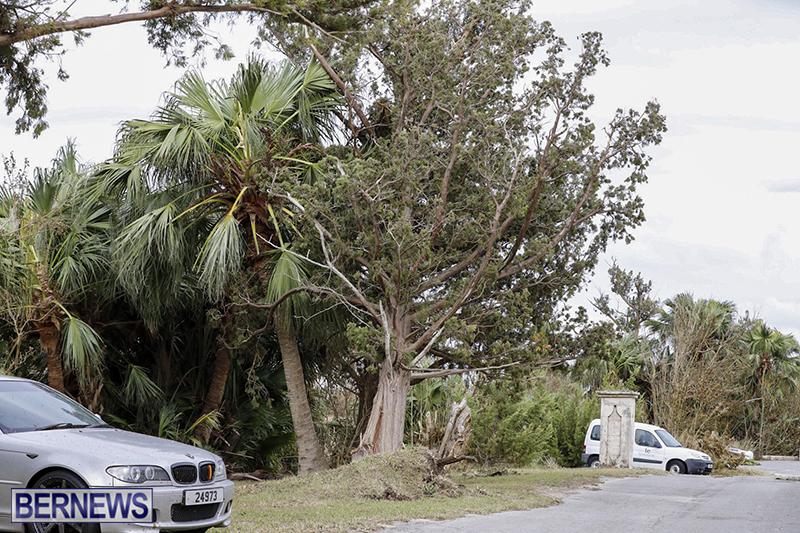 Bermuda-After-Hurricane-Humberto-Friday-Sept-20-2019-113