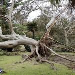 Bermuda After Hurricane Humberto Friday Sept 20 2019  (118)