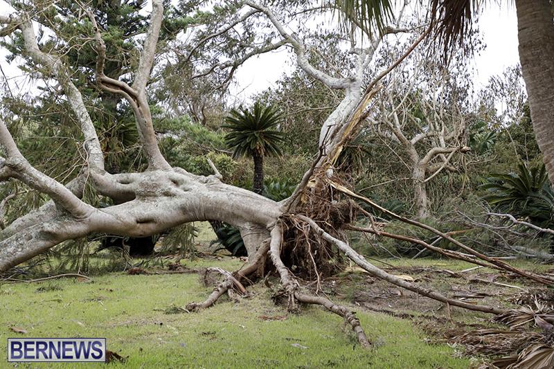 Bermuda-After-Hurricane-Humberto-Friday-Sept-20-2019-118