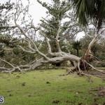 Bermuda After Hurricane Humberto Friday Sept 20 2019  (119)