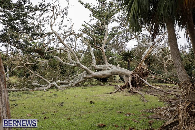 Bermuda-After-Hurricane-Humberto-Friday-Sept-20-2019-119