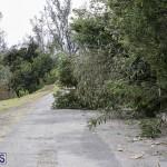 Bermuda After Hurricane Humberto Friday Sept 20 2019  (13)