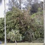 Bermuda After Hurricane Humberto Friday Sept 20 2019  (139)