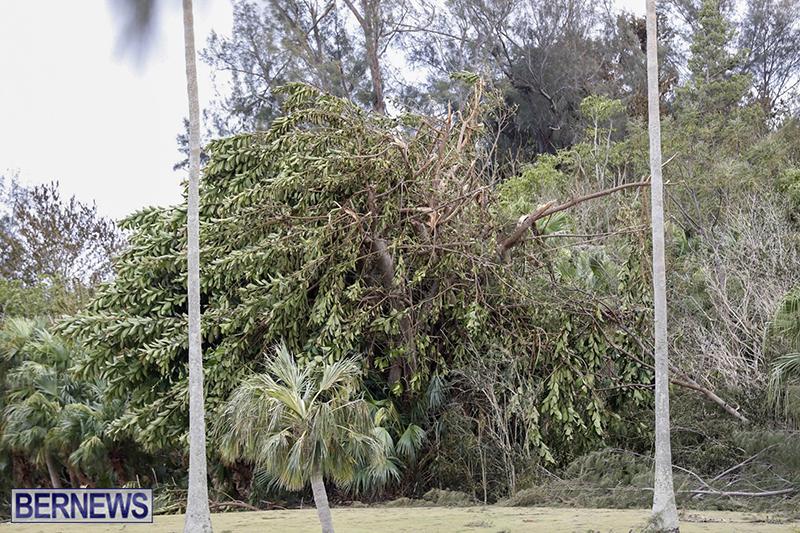 Bermuda-After-Hurricane-Humberto-Friday-Sept-20-2019-139