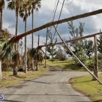 Bermuda After Hurricane Humberto Friday Sept 20 2019  (21)