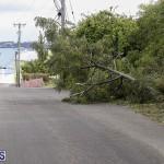 Bermuda After Hurricane Humberto Friday Sept 20 2019  (44)