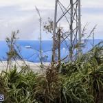 Bermuda After Hurricane Humberto Friday Sept 20 2019  (85)