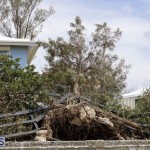 Bermuda After Hurricane Humberto Sept 20 2019 (101)