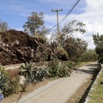 Bermuda After Hurricane Humberto Sept 20 2019 (15)