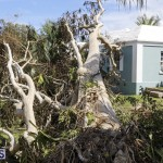Bermuda After Hurricane Humberto Sept 20 2019 (38)