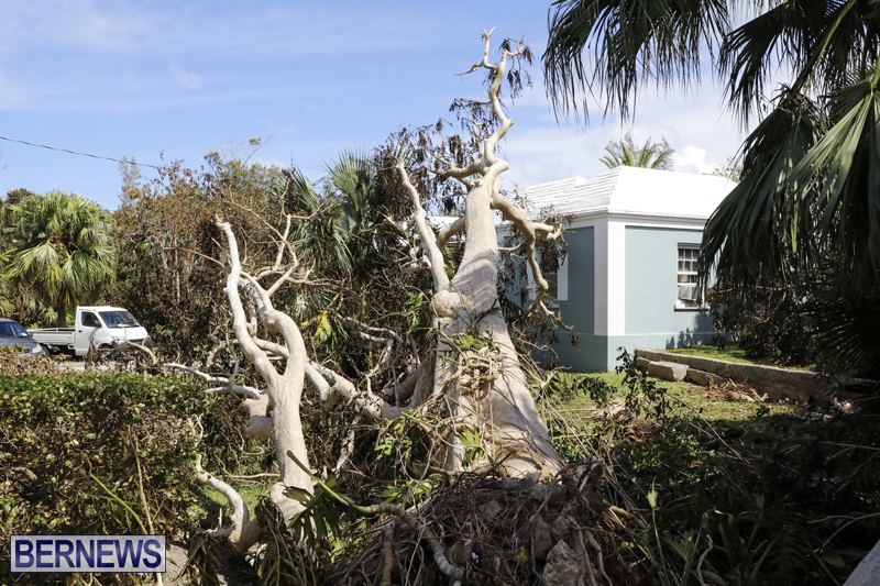 Bermuda-After-Hurricane-Humberto-Sept-20-2019-39