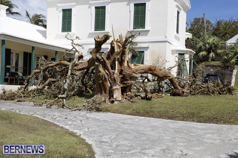 Bermuda-After-Hurricane-Humberto-Sept-20-2019-65