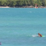Open Water Bermuda National Swimming Championships, September 15 2019-0010