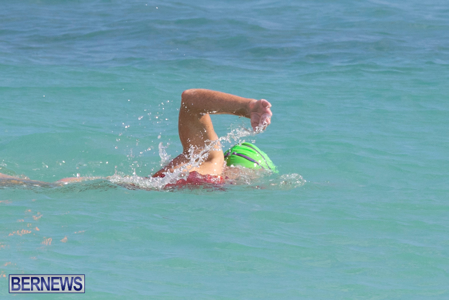 Open-Water-Bermuda-National-Swimming-Championships-September-15-2019-0038