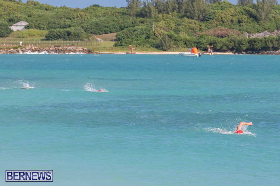 Open-Water-Bermuda-National-Swimming-Championships-September-15-2019-0039