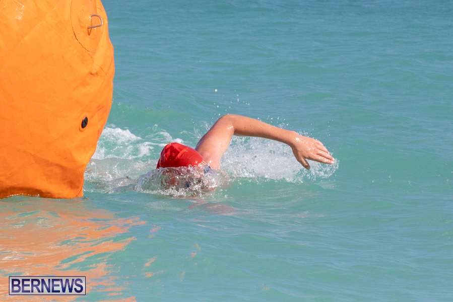 Open-Water-Bermuda-National-Swimming-Championships-September-15-2019-0041