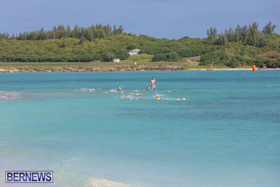 Open-Water-Bermuda-National-Swimming-Championships-September-15-2019-0062