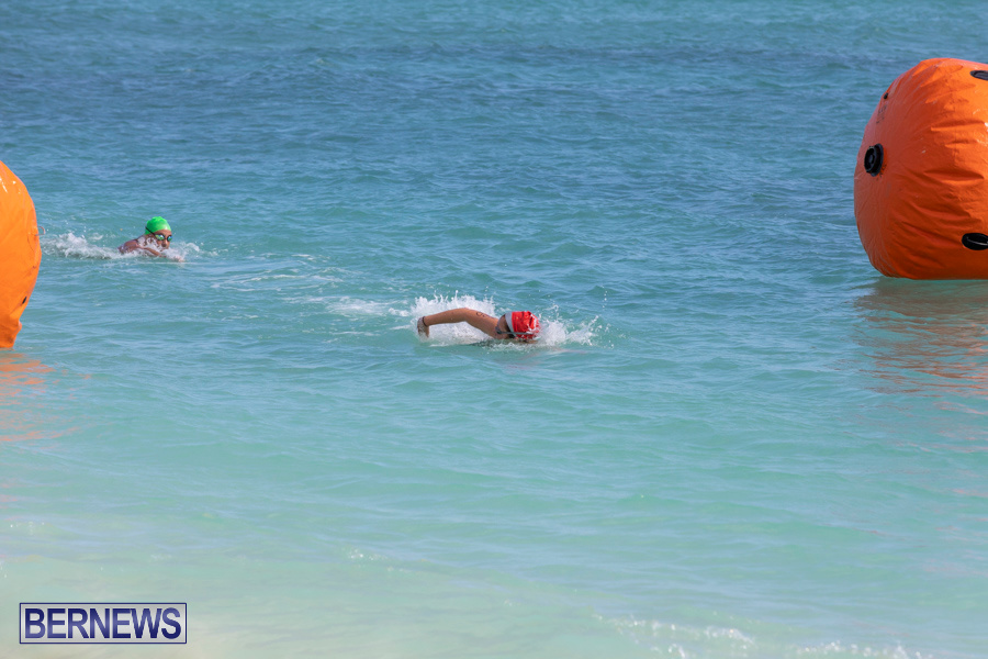 Open-Water-Bermuda-National-Swimming-Championships-September-15-2019-0068