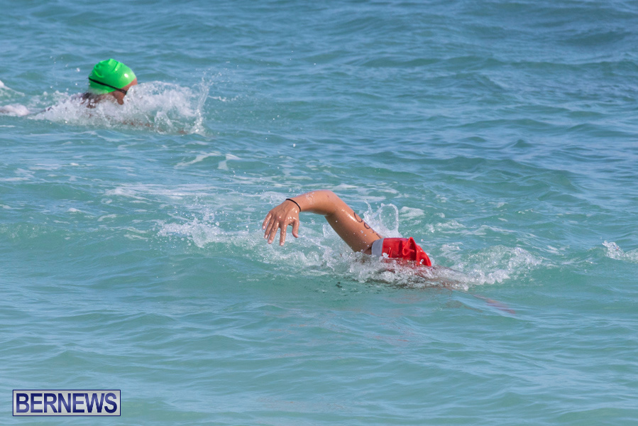 Open-Water-Bermuda-National-Swimming-Championships-September-15-2019-0072