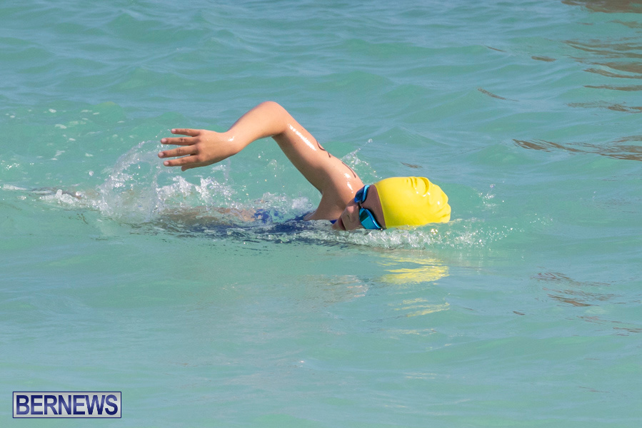 Open-Water-Bermuda-National-Swimming-Championships-September-15-2019-0125