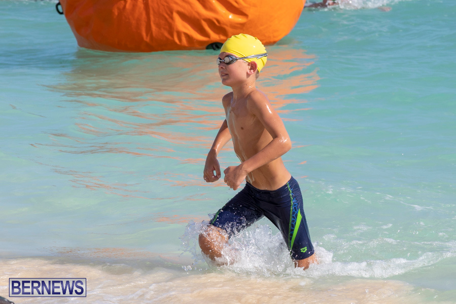 Open-Water-Bermuda-National-Swimming-Championships-September-15-2019-0144-2